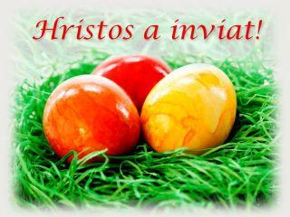actualitati-arad.ro vă urează Paște fericit!