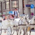Cu trăsura prin Viena