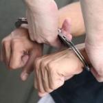 Ce a furat un tânăr dintr-o fostă fermă din Nădlac