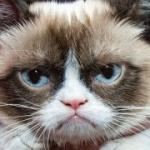 Grumpy Cat este prima felină care va avea o statuie din ceară.