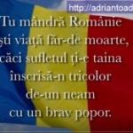 Un nou imn al României. VEZI propunerea unui academician