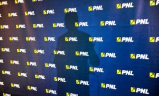 Alegeri în PNL. Data propusă pentru congres – 25 septembrie