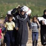 Falcă: Nu am cerut să fie aduși refugiați la Arad