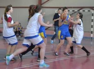 sportsin2015