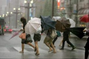 vant-si-ploi