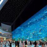 Dubai Mall este cel mai mare complex din lume dedicat cumpărăturilor și distracției.