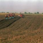 Cât pământ au cumpărat străinii în județul Arad