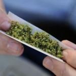 Canabisul este cel mai consumat drog în Europa