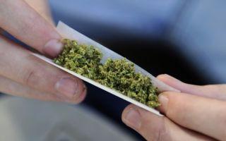 Legalizarea canabisului în scop medicinal, adoptată tacit de Senat