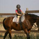 Ofertă pentru copii: Tabără de călărie în Köröstarcsa (Ungaria) (P)