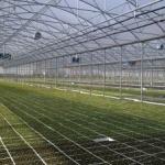 Un elvețian vrea să investească în județul Arad
