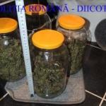 Traficant de droguri din Arad, arestat