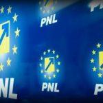 În PNL vor fi alegeri de jos în sus. Noul preşedinte, ales cel mai târziu în iunie