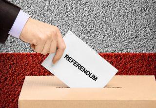 Temele referendumului – interzicerea amnistiei şi graţierii pentru infracţiuni de corupţie şi a adoptării OUG în domeniul judiciar