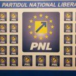 Primarii Falcă și Abrudan, candidați la șefia PNL Arad