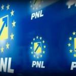PNL pregătește un congres la care să participe 5.000 de membri