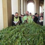 Duminica Floriilor la Catedrala Arhiepiscopală din Arad