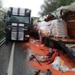 Trei autocamioane implicate într-un accident pe DN 7