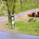 Camere video în Pădurea Ceala pentru depistarea celor care aruncă gunoaie