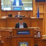 Deputatul Sergiu Vlad acuză PSD că întreţine dezastrul şi nesiguranţa din păduri