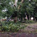 UPDATE Vijelie în Arad. Acoperişuri avariate, copaci rupţi şi localităţi fără curent