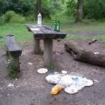 Tânăr amendat după un picnic în Pădurea Ceala