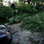 Furtună în Arad. Acoperişuri smulse şi copaci rupţi