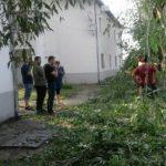 UPDATE Intervenții pentru remedierea avariilor produse de furtună