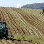 Unde sunt cele mai scumpe terenuri agricole din județul Arad