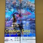 Un artist arădean deschide sezonul la Pôle Culturel de Drusenheim