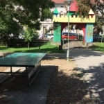 USR cere amendarea primarului pentru dezastrul din parcurile arădene
