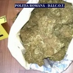 Traficant de droguri, arestat la Arad