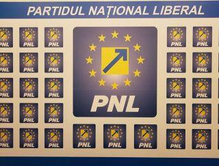 """PNL Păuliș: """"PSD face experimente scumpe, chiar dacă în joc este situația copiilor din Păuliș"""""""