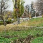 Primăria Arad continuă campania de reabilitare a spațiilor verzi. 447 arbori plantaţi în oraș