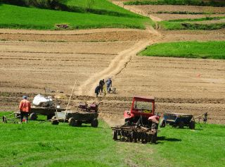 Cele mai multe terenuri agricole vândute în iunie, în județul Arad