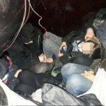 Migranți ascunși printre bagaje, descoperiți la Nădlac