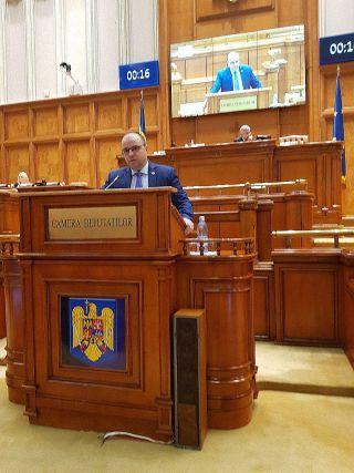 """Adrian Todor: """"Falcă face orice pentru a opri amplasarea unui monument al Marii Uniri în Arad"""""""