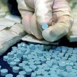 Pastile de Ecstasy și cannabis, descoperite la traficanţi de droguri