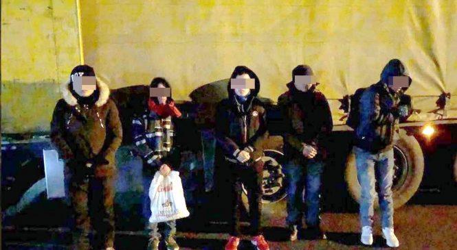 Cinci vietnamezi au fost găsiți ascunși într-un TIR, la frontieră