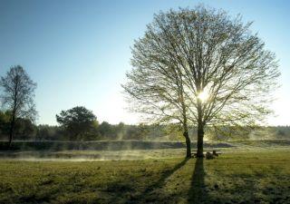 Echinocțiul de primăvară 2018. Tradiții, obiceiuri și superstiții