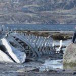"""""""Leviatan"""", pelicula nominalizată la Oscar pentru cel mai bun film străin, proiectată la """"Arta"""""""