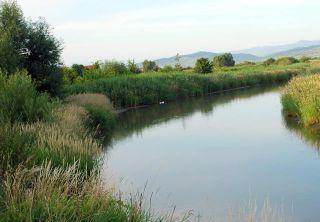 Licitație pentru decolmatarea Canalului Morilor