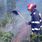 Incendiu de vegetație uscată și arboret, între Dezna și Slatina de Mureș