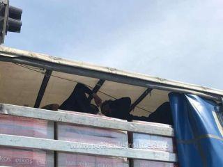 Migranți găsiți ascunși într-un automarfar, la PTF Nădlac II
