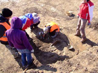 Cercetări la Pecica. Specialiștii analizează dacă ciuma a existat în epoca bronzului