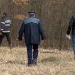 Un bătrân plecat după ciuperci s-a rătăcit în pădure