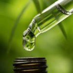 Cum determini calitatea și eficacitatea uleiului de canabis din comerț?