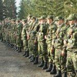 Campanie de recrutare. Rezerviști voluntari în Armata României
