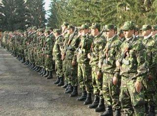 Ministrul Apărării, despre reintroducerea stagiului militar obligatoriu