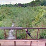 Interpelare legată de canalul Mureșel, depusă de un deputat USR Arad